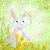 easter rabbit with yellow flowers and butterfly on grunge paper stock photo © cherju