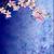 bloesem · kers · grunge · Blauw · vierkante - stockfoto © cherju