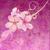 pink flowers on dark pink background grunge illustration stock photo © cherju