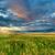 bulutlar · üzerinde · saskatchewan · anız · alan - stok fotoğraf © chesterf