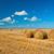 campo · paglia · cielo · blu · erba · natura · sfondo - foto d'archivio © chesterf