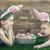 girls wearing bunny ears stock photo © choreograph