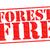 pożar · lasu · lasu · ogromny · ognia · na · północ · Portugalia - zdjęcia stock © chrisdorney