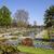 bella · english · giardino · primavera · fioritura · fiori - foto d'archivio © chrisdorney