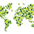 go green leaf world map stock photo © cienpies