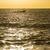yelkencilik · cennet · tropikal · plaj · bulutlar · spor - stok fotoğraf © cienpies