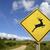 交通標識 · 警告 · 野生動物 · 草 · 森林 - ストックフォト © cienpies
