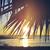 summer beach sunset palm tree vintage background stock photo © cienpies
