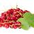 monte · vermelho · brilhante · verão · jardim · natureza - foto stock © cipariss