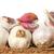 geheel · kruidnagel · knoflook · geïsoleerd · witte - stockfoto © Cipariss