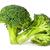 twee · broccoli · naast · geïsoleerd · witte · voedsel - stockfoto © cipariss