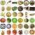alimentare · collage · isolato · bianco · mela · frutta - foto d'archivio © claudiodivizia