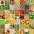 Вишневое · коллаж · фото · различный · листьев · свечей - Сток-фото © claudiodivizia