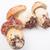 cèpes · cèpes · penny · chignon · cuisine - photo stock © claudiodivizia