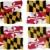 zászló · Maryland · nagyszerű · kép - stock fotó © clearviewstock