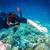 búvárkodik · úszik · víz · férfi · sport · férfiak - stock fotó © cookelma