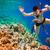 snorkeler maldives indian ocean coral reef stock photo © cookelma