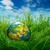 окружающий · сохранение · трава · мяча · сфере · природного - Сток-фото © cookelma