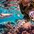 клоуна · рыбы · иллюстрация · любви · морем · океана - Сток-фото © cookelma