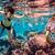 sualtı · dalış · beyin · mercan · su · balık - stok fotoğraf © cookelma