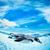 yüzme · penguen · görüntü · su · göz · yüz - stok fotoğraf © cookelma