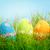 huevos · de · Pascua · flor · pradera · 17 · hierba · huevo - foto stock © cookelma