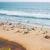ビーチ · インド · 海 · インド · シフト · レンズ - ストックフォト © cookelma
