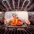 cozinhar · frango · forno · chef · frango · assado · foco - foto stock © cookelma