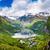 schönen · Natur · lange · Zweig · aus · groß - stock foto © cookelma