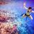 коралловый · риф · рыбы · различный · пути · природы - Сток-фото © cookelma