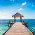 свадьба · Мальдивы · медовый · месяц · фото · рук - Сток-фото © cookelma