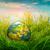 wereldbol · groen · gras · voorjaar · ontwerp - stockfoto © cookelma