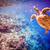 teknős · víz · Maldív-szigetek · óceán · korallzátony · figyelmeztetés - stock fotó © cookelma