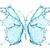 蝶 · アクション · 孤立した · 花 · 幸せ · 夏 - ストックフォト © cookelma