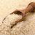 kepçe · basmati · kahverengi · pirinç · kokulu · rustik - stok fotoğraf © coprid