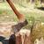 tűzifa · boglya · balta · zöld · erdő · farm - stock fotó © cosma