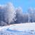 kış · yol · ahşap · orman · doğa · kar - stok fotoğraf © cosma