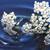 beyaz · sıçrama · çiçekler · beyaz · çiçekler · süt · yeşil - stok fotoğraf © cosma