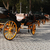 carriage parking stock photo © cosma
