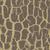 casca · textura · bege · cores · interior - foto stock © cosveta