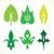 decorativo · foglie · verdi · pattern · set · isolato · bianco - foto d'archivio © cosveta