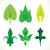 eco · ağaç · yaprak · logo · şablon · yalıtılmış - stok fotoğraf © cosveta