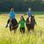 menina · caucasiano · equitação · cavalo · ao · ar · livre - foto stock © courtyardpix