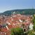 prague   st nicolas church and rooftops of mala strana stock photo © courtyardpix