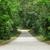dramático · pôr · do · sol · asfalto · estrada · sol · luz - foto stock © cozyta