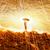 yanan · taş · çakıl · Alevler · karanlık - stok fotoğraf © cozyta