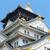 Osaka · kasteel · een · beroemd · Japan · asia - stockfoto © cozyta