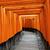 japonês · escrita · templo · santuário · Tóquio · monocromático - foto stock © cozyta