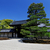 bonsai · mooie · Rood · boom · natuur · blad - stockfoto © cozyta