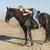 paardrijden · meisje · strand · zwarte · hengst · vrouw - stockfoto © cynoclub